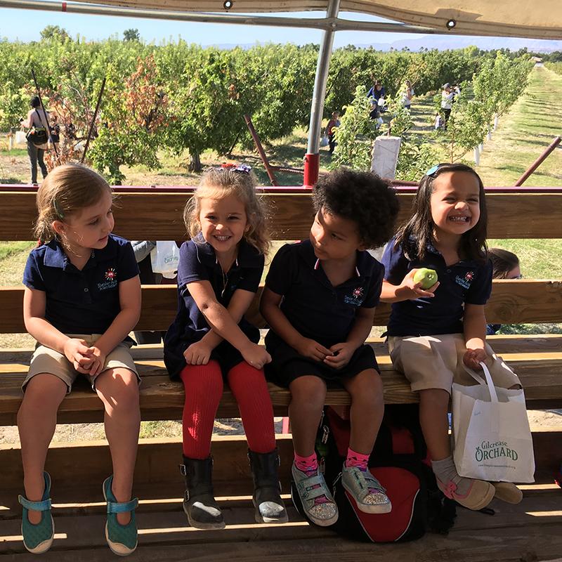 Shenker Academy_Gilgrease Orchard
